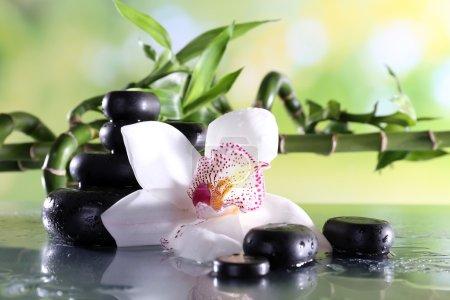 Photo pour Pierres de spa et orchidée blanche sur table sur fond naturel - image libre de droit