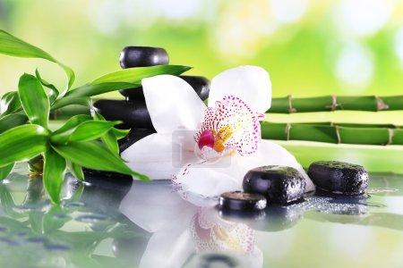 Photo pour Pierres de Spa, branches de bambou et orchidée blanche sur table sur fond naturel - image libre de droit