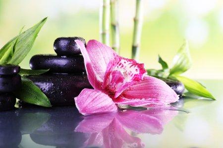 Photo pour Pierres de Spa, de branches de bambou et de lilas orchidée sur table sur fond naturel - image libre de droit