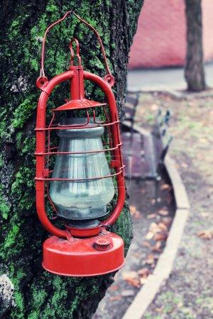 Kerosene lamp on tree, outdoors