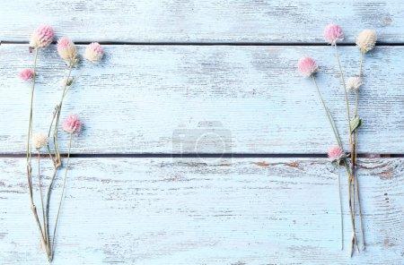Fleurs séchées sur fond en bois de couleur