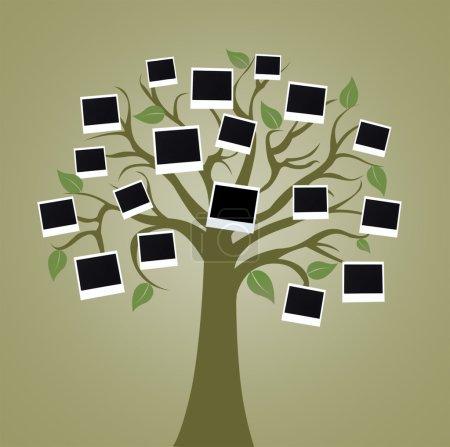 Photo pour Grand arbre avec des cartes photo sur fond couleur - image libre de droit