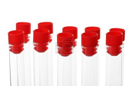 Test tubes isolated on white
