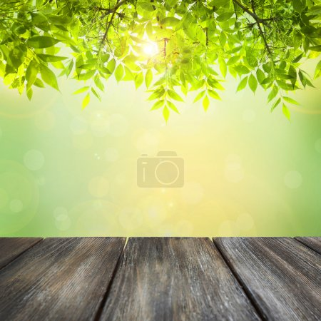 Photo for Wooden board on green natural background - Royalty Free Image