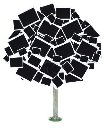 Photo pour Grand arbre composé de cartes photo isolées sur blanc - image libre de droit