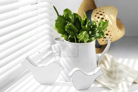 Watering can with variety of green leaves for salad on windowsill