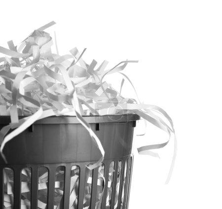 Photo pour Bandes de papier détruit du broyeur à ordures peuvent isolé sur blanc - image libre de droit
