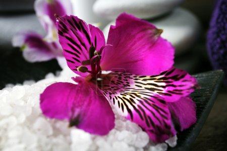 Photo pour Spa nature morte avec des fleurs violettes sur une table en bois, gros plan - image libre de droit