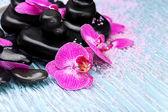 Fialové orchideje a zen kameny