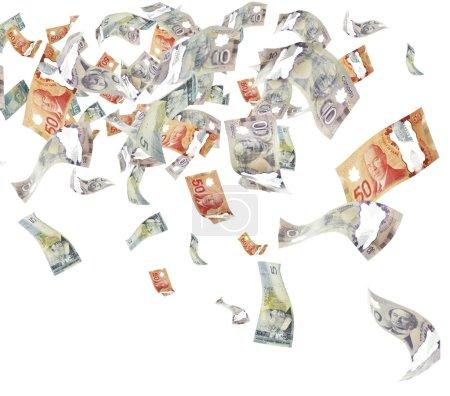 Photo pour Dollars canadiens, isolés sur blanc - image libre de droit