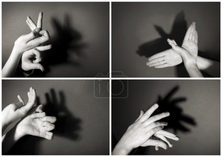 Photo for Hands gesture like different  animals and figures on gray background - Royalty Free Image