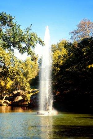 Fountain on the lake