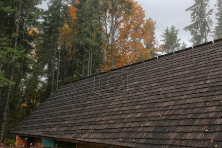 House wooden roof