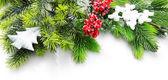 Zdobené vánoční strom větev s červenými plody na bílém pozadí