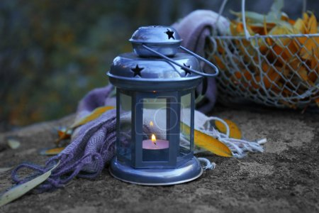 Decorative lamp in forest