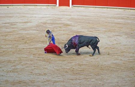 In the heat of bullfighting show
