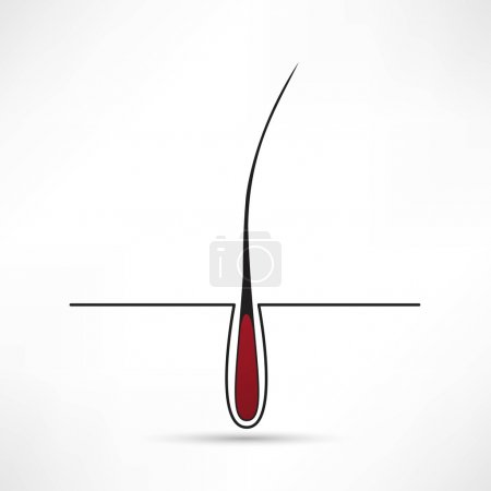 Illustration for Hair follicle treatment design - Royalty Free Image