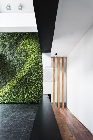 modern architecture minimal style interior with vertical garden
