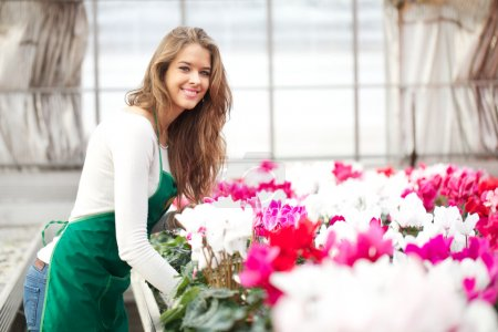 florist working in retail