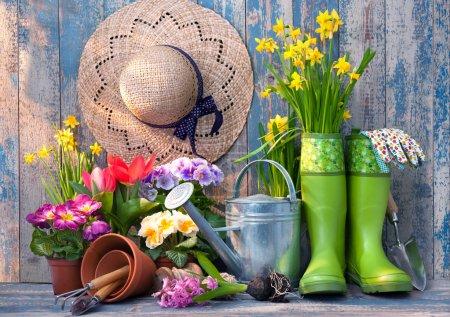 Photo pour Outils de jardinage et fleurs sur la terrasse dans le jardin - image libre de droit