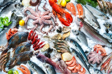 Photo for Seafood on ice at the fish market - Royalty Free Image
