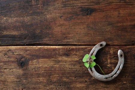 Old horse shoe,with clover leaf