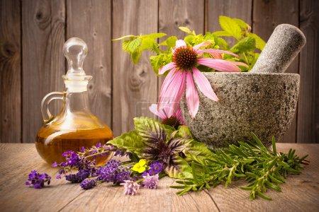 Photo pour Herbes de guérison au mortier et bouteille d'huile essentielle sur bois - image libre de droit