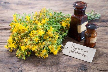 Alternative medicine, Herbal medicine
