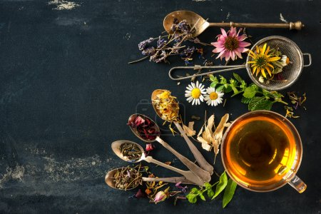 Photo pour Tasse de tisane avec des fleurs sauvages et diverses herbes - image libre de droit