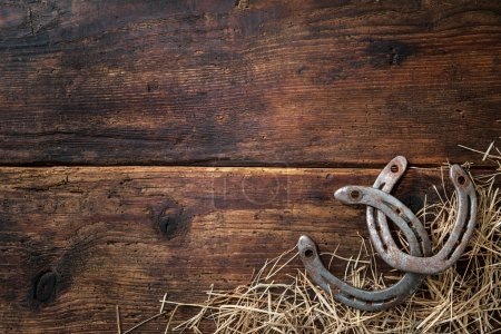 Two old rusty horseshoes with straw