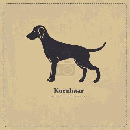 Kurzhaar  dog silhouette