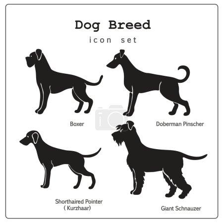 Set of four dog breeds  icons