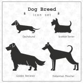 Stylized set of four dog breeds Dog paws background seamless pattern included Stylized icons of Dachshund Scottish Terrier Doberman Golden RetrieverAll objects are conveniently grouped and are easily editable