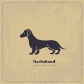 Hand drawn Dachshund vintage  poster All objects are conveniently grouped and are easily editable  Pure stylized silhouette of a dog is easily accessible
