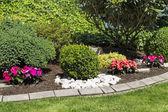 Blooming ornamental flower garden in spring