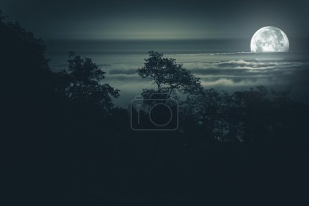 Photo for Full Moon Night. Moon Light Above Foggy Valley. Scenic Night Time Landscape. Full Moon Night Background - Royalty Free Image