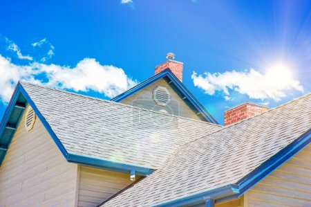 House Roof Roofing Business