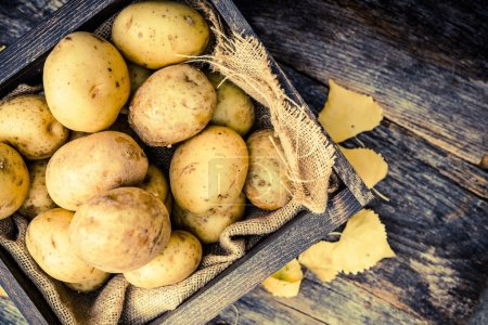 Raw Organic Potatoes
