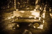 Forest Trail Bench