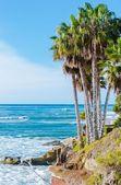 South California Pacific Coast