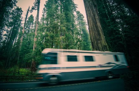 Photo for California RV Trip. Class A Recreational Vehicle Speeding on the Redwood Forest Road in Northern California, United States. - Royalty Free Image