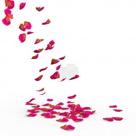 Photo for Rose petals fall to the floor. Isolated background. 3D Render - Royalty Free Image