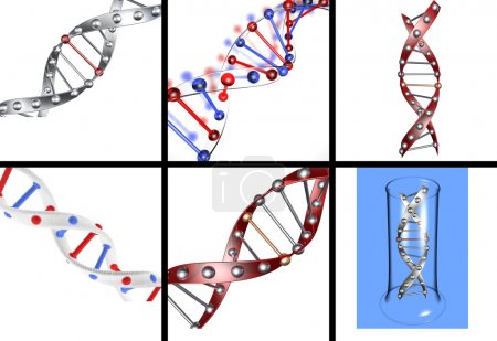 Photo pour Ensemble de structures de l'ADN dans des versions différentes sur un fond isolé - image libre de droit