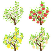 Set of cartoon stylized apple lemon and pear trees