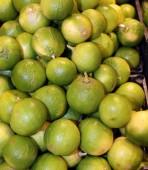 bergamia citrus or green  bergamot  for sale