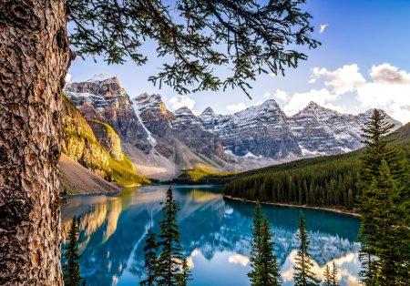 Photo pour Vue du paysage du lac Morain et de sa chaîne de montagnes avec arbre au premier plan, Alberta, Canada - image libre de droit