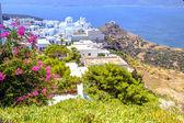 Landscape view of traditional cycladic village Plaka, Milos isla