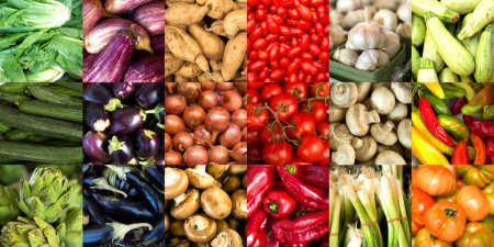 Colorful vegetables collage