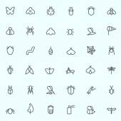 Set of 36 Insect icon