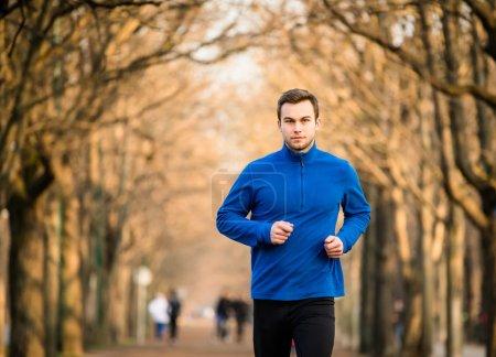 Photo pour Jeune homme jogging dans la ruelle de l'arbre - fin de l'automne - image libre de droit
